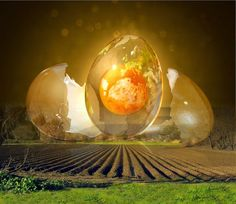 Trilhas de Luz: Renascimento Cotidiano