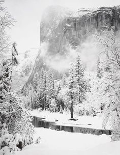 Ansel Adams, El Capitan, Winter, Yosemite National Park, California on ArtStack #ansel-adams #art
