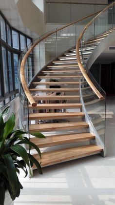 China Staircase Manufacturer office curved stairs, commercial helical staircase, stainless steel glass railing curved stairs,stainless brushed nickel with natural wood color looks great Glass Stairs Design, Home Stairs Design, Glass Railing, Railing Design, Interior Stairs, Glass Balustrade, Staircase Railings, Curved Staircase, Modern Staircase