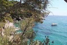 Domaine du Rayol (summer garden walk along the coast) -Le Rayol-Canadel, France
