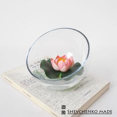 Shop Popular Bowl Glass Vase from China | Aliexpress