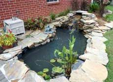 Miniature Ponds – How To Build A Small Pond In Your Garden. Caution, make it BIGGER than you think you want or you will be wanting it bigger when you are done.  A mistake most people make when building a pond.