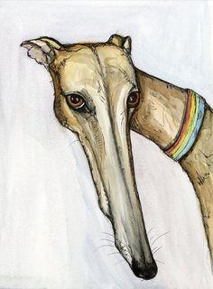 My Lovely greyhound