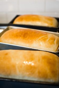 This easy homemade bread recipe makes three loaves! Using your stand mixer, you can make hearty, delicious white bread for sandwiches using all-purpose flour! Easy Bread Loaf Recipe, Easy White Bread Recipe, Homemade Sandwich Bread, Best Homemade Bread Recipe, Homemade White Bread, Easy Bread Recipes, Bread Flour Recipes, Homemade Breads, Bread Recipe Using All Purpose Flour