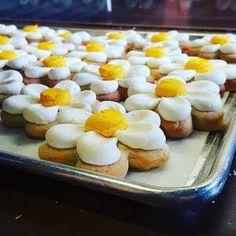 Flower Sugar Cookies ronattascakery.com