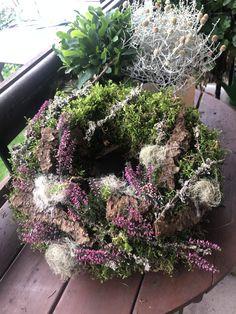 Plants, Autumn Decorations, Plant, Planets