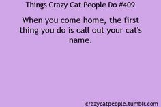 Things crazy cat people do