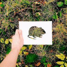 Nikolai utilise astucieusement la nature pour colorier des animaux qu'il découpe…