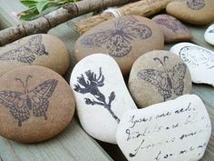 Don't throw rocks..Unless they are pretty..X