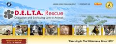 D.E.L.T.A. Rescue (Dedication and Everlasting Love to Animals) is a wonderful no-kill animal sanctuary in the high desert of southern CA