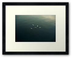 Floating still life by josemanuelerre