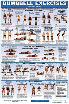 26 best exercises images  exercise physical therapy