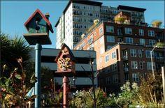 Decorative birdhouses look like avian condos in the urban Belltown Cottage Park