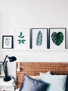 botanical prints instagram @margo.hupert.art