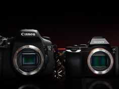 Finding the right camera for you can be hard. Here are some good tips that will help you figure out which camera is the best choice for you.