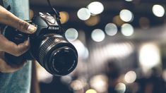 New to photography? These are the best cameras for beginners. Panasonic Camera, Camera Nikon, Bridge Camera, Optical Image, System Camera, Sports Camera, Image Processing, Best Cameras For Beginners, Video Capture
