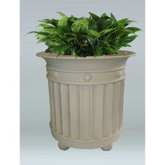 "Allied Molded Products Virginia Round Pot Planter Size: 24"" H x 24"" W x 18"" D, Color: Rosewood"
