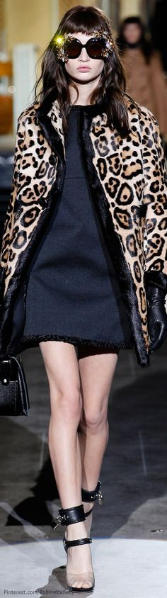 Dsquared² | F/W 2014 | The House of Beccaria~