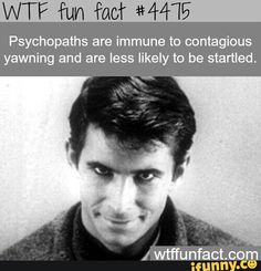 Wtf fun fact #4475. Im definetly not a psychopath.  I yawn just by typing the word (it just happened) i also scare easily
