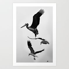 Caught in motion. Art Print by LinnB - also available as iphone case