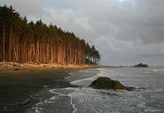 Olympic National Park Washington