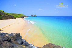 Praia do Bode - Fernando de Noronha - Pesquisa Google