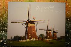 from Netherland