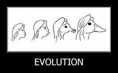 evolution, picture, pose