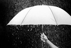Hand holding an umbrella in rain, black background - business and fashion concept. Free art print of Umbrella. Light Photography, Black And White Photography, Artistic Fashion Photography, Save Nature, Free Art Prints, Singing In The Rain, Fashion Poses, Amazing Nature, Black Backgrounds