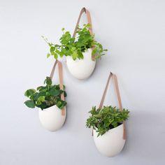 Porcelain Planters Set Of 3 by Farrah Sit   Fab.com