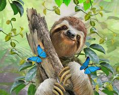 Trademark Fine Art 'Happy Sloth' Graphic Art Print on Wrapped Canvas Size: H x W x D Stonehenge, James Rizzi, Baby Animals, Cute Animals, Wall Decor Pictures, Animal Paintings, Wall Murals, Wallpaper Murals, Animal Wallpaper