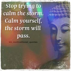 stop trying to calm the Strom. Calm yourself the Strom will pass #budhaquotes #budha #inspire Best Templates, Blogger Templates, Calming The Storm, Website Template, How To Look Pretty, Positive Vibes, Motivationalquotes, Letting Go, Lets Go