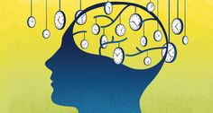 To perceive time, the brain relies on internal clocks that precisely orchestrate movement, sensing, memories and learning.