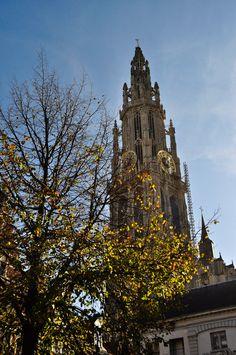 Looking up at Sint Katherine's Tower - Antwerp