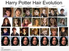 harry potter order of the phoenix members - Google Search