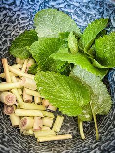 zelf limonade maken Celery, Cantaloupe, Fruit, Vegetables, Food, Vodka, Veggie Food, Vegetable Recipes, Meals