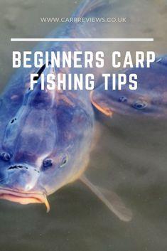 Beginners carp fishing tips - Beginners carp fishing tips. Carp Fishing Tips, Carp Fishing Bait, Sea Fishing, Trout Fishing, Kayak Fishing, Fishing Pliers, Fishing Charters, Fishing Calendar, Crappie Jigs