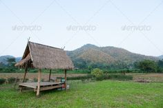 hut in the fields ...  Chaingmai, agricultural, agriculture, asia, asian, background, building, cold, cool, cottage, country, countryside, crop, culture, environment, farm, farming, field, food, grain, grass, green, green field, harvest, hill, home, house, hut, land, landscape, mountain, natural, nature, outdoor, plant, plantation, rural, sky, summer, terrace, thailand, tourism, travel, tree, valley, village, wood, wooden, yellow