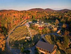 Take a drive up to Wolf Mountain Winery and enjoy the aerial view at sunset. Open for wine tours and tastings as well as wonderful Sunday brunch.