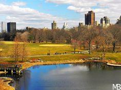 Scatti e Bagagli: 7 giorni a New York, la città che non dorme mai! Central Park