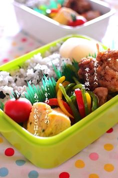 rice and chicken bento