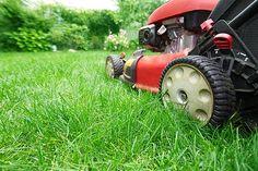 Jak udržovat trávník v dokonalém stavu?