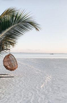 In front of us lay a smooth sandy beach, beyond which rose gradually a high wooded country, and behind us was the sea, studded with numerous islands of every variety of form.