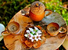 acorn fairy tea set  OMG! I used to do this when I was a little girl at my…