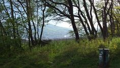 Stadtwanderweg 5 - Stammersdorf und Bisamberg, Wien Tours, Mountains, Nature, Plants, Travel, Biking, Hiking, City, Viajes