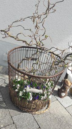 Möbel & Wohnen 7 Äste Korkenzieherhasel Zweige Basteln Dekoration 2 Lassen Sie Unsere Waren In Die Welt Gehen