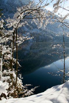 Image detail for -winter scene
