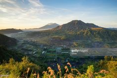 Morning Scene at Kintamani with view of Mount Bali - Indonesia. Kintamani is a highland area in the north of East Bali.
