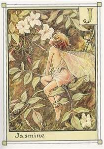 Jasime Fairy by Cicely Mary Barker