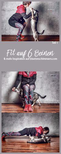 So wirst Du #tierisch #fit! Mit der Reihe #Fitauf6Beinen zeige ich Dir spannende #Fitnessübungen für Dich & Deinen Hund. Werde auch Fit auf 6 Beinen und laste Deinen #Hund beim #Fitnessworkout geistig aus. #hunde #hundeblick #hundeliebe #hundeblog #hundeblogger #fitness #fitmithund #fit #mit #hund #tierischfit #tierisch #übungen #übungenmithund #fitnessübungen #workout #fit #durch #2017 #abnehmen #bewegung #fitspo #fitness #motivation #inspiration #fit #werden